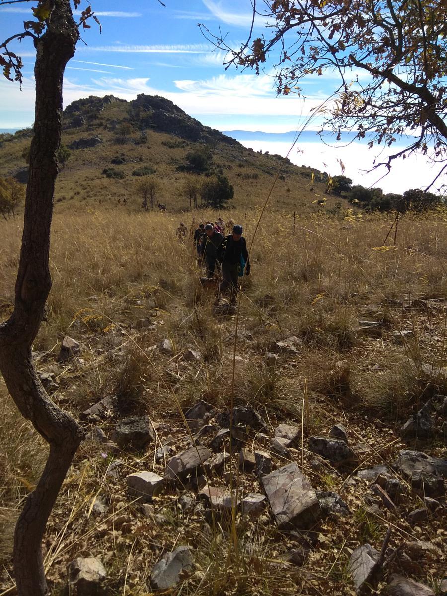 Buscando una senda (Javier Marín)